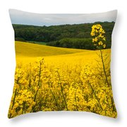 Lovely Hills Throw Pillow by Davorin Mance