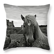 Lovely Horse And Tantallon Castle Throw Pillow