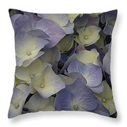 Lovely In Blue And White - Hydrangea Throw Pillow