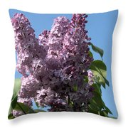 Lovely In Lilac Throw Pillow
