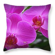 Lovely In Purple - Orchids Throw Pillow