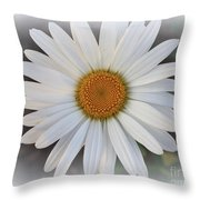 Lovely In White - Daisy Throw Pillow