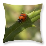 Lovely Lady Bug Throw Pillow
