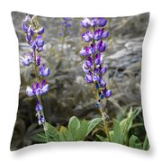 Lovely Lupines Throw Pillow