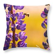 Lovely Lupins And Busy Bee Throw Pillow