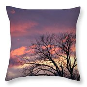 Lovely Pastels Throw Pillow