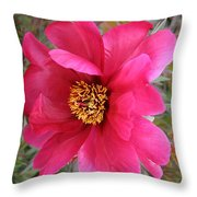 Lovely Peony Throw Pillow