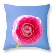 Lovely Pink Flower Series 3 Or 5 Throw Pillow