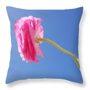 Lovely Pink Flower Series 4 Or 5 Throw Pillow