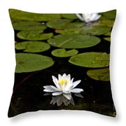 Lovely Pond Lily Throw Pillow