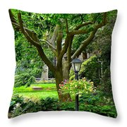 Lovely Suburban Front Yard Throw Pillow