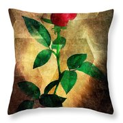 Love's Enchantment Throw Pillow