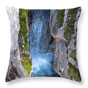 Love's Endurance Throw Pillow