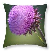 Loving Lavender Throw Pillow