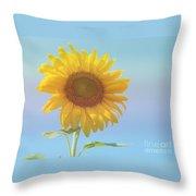 Loving The Sun Throw Pillow