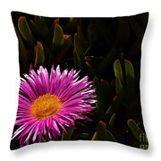 Loving The Sun  Throw Pillow