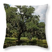 Low Country Beauty II Throw Pillow