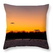 Low Flyby Throw Pillow