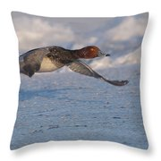 Low Flying Redhead Throw Pillow