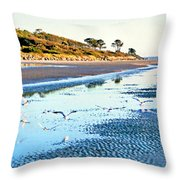 Low Tide At Jekyll Island Throw Pillow