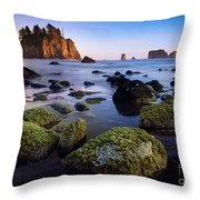 Low Tide At Second Beach Throw Pillow