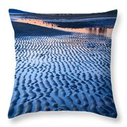 Low Tide In Seattle Throw Pillow