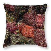 Low Tide Party Throw Pillow