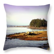 Low Tide Revelations Throw Pillow