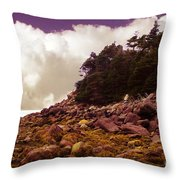 Low Tide Shoreline Closeup With Clouds Throw Pillow