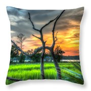 Lowcountry Charm Throw Pillow