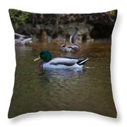 Lowcountry Duck Gathering Throw Pillow
