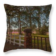Lowcountry Gates To Boone Hall Plantation Throw Pillow