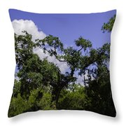 Lowcountry Life Oaks Throw Pillow