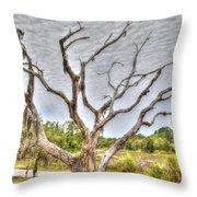 Lowcountry Marsh On Sea Island Throw Pillow