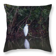 Lowcountry Pond Life Throw Pillow