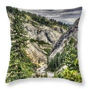 Lower Bear 2 Throw Pillow