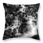 Lower Bridal Veil Falls 1 Bw Throw Pillow