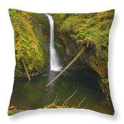Lower Butte Creek Falls Throw Pillow