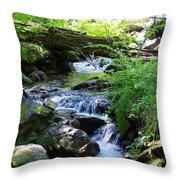 Lower Granite Falls 2 Throw Pillow