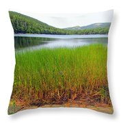 Lower Hadlock Pond Throw Pillow
