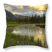 Lower Ice Lake Throw Pillow