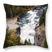 Lower Mesa Throw Pillow