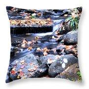 Lower Part Of Munising Falls Throw Pillow