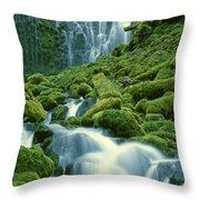 Lower Proxy Falls Throw Pillow