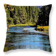 Lower Truckee River Throw Pillow