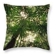 Lowland Tropical Rainforest Fan Palms Throw Pillow