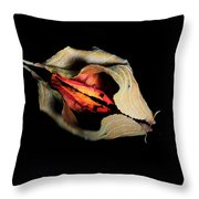 Lr 001 Throw Pillow