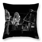 Ls Spo #21 Crop 2 Throw Pillow