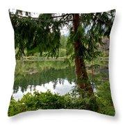 Lush Green At Starvation Lake Throw Pillow