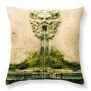 Lucca Fountain Throw Pillow